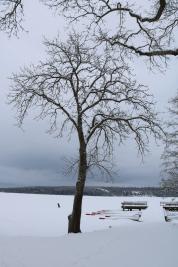 Strängnäs februari 2018
