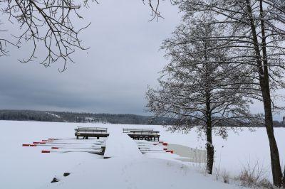 Ulvhäll febuari 2018
