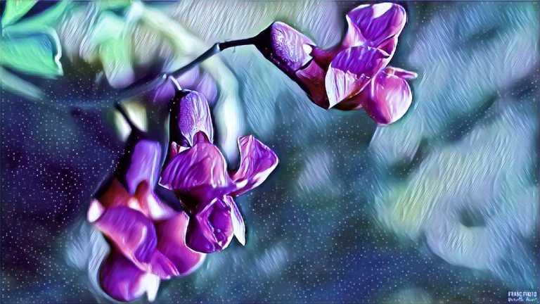 flower1_francphoto_180919