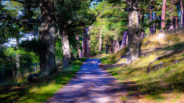 path_francphoto_180923_press