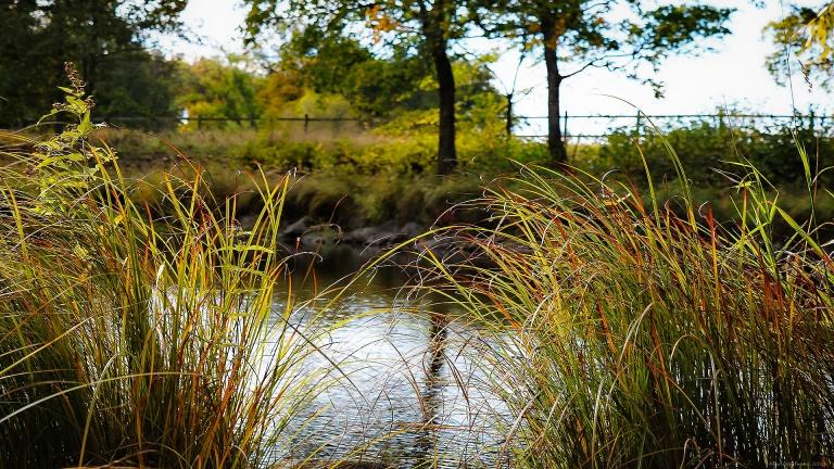stromsholmsslott_vatten_180929_francphoto_press
